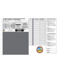 Welsh/English Bilingual Personalised Incident Slips - Refills