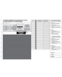 Welsh/English Bilingual Standard Incident Slips - Refills  (packs of 216)